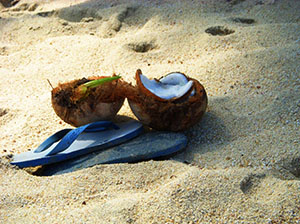 Sandals-Coconut-beach-small